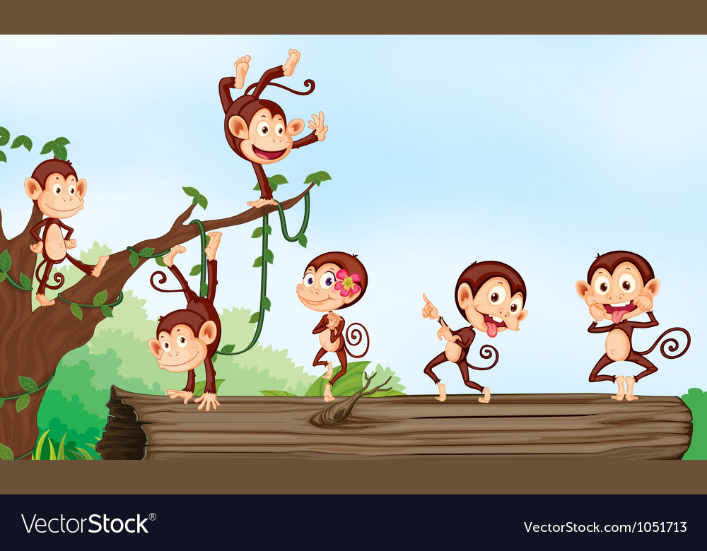 A group of monkeys vector   Price: 3 Credit (USD $3)