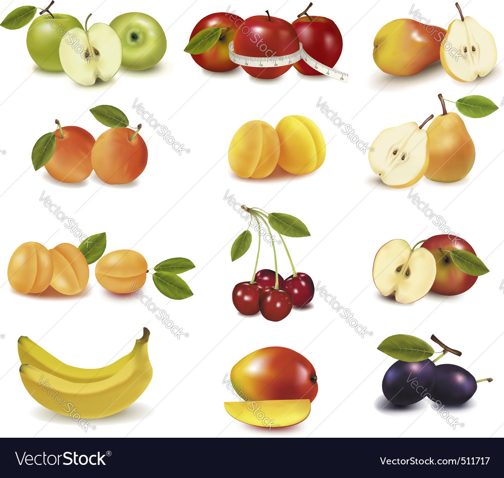 Group with different fruits vector | Price: 3 Credit (USD $3)