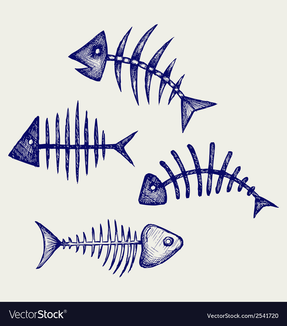 Fish bone vector | Price: 1 Credit (USD $1)