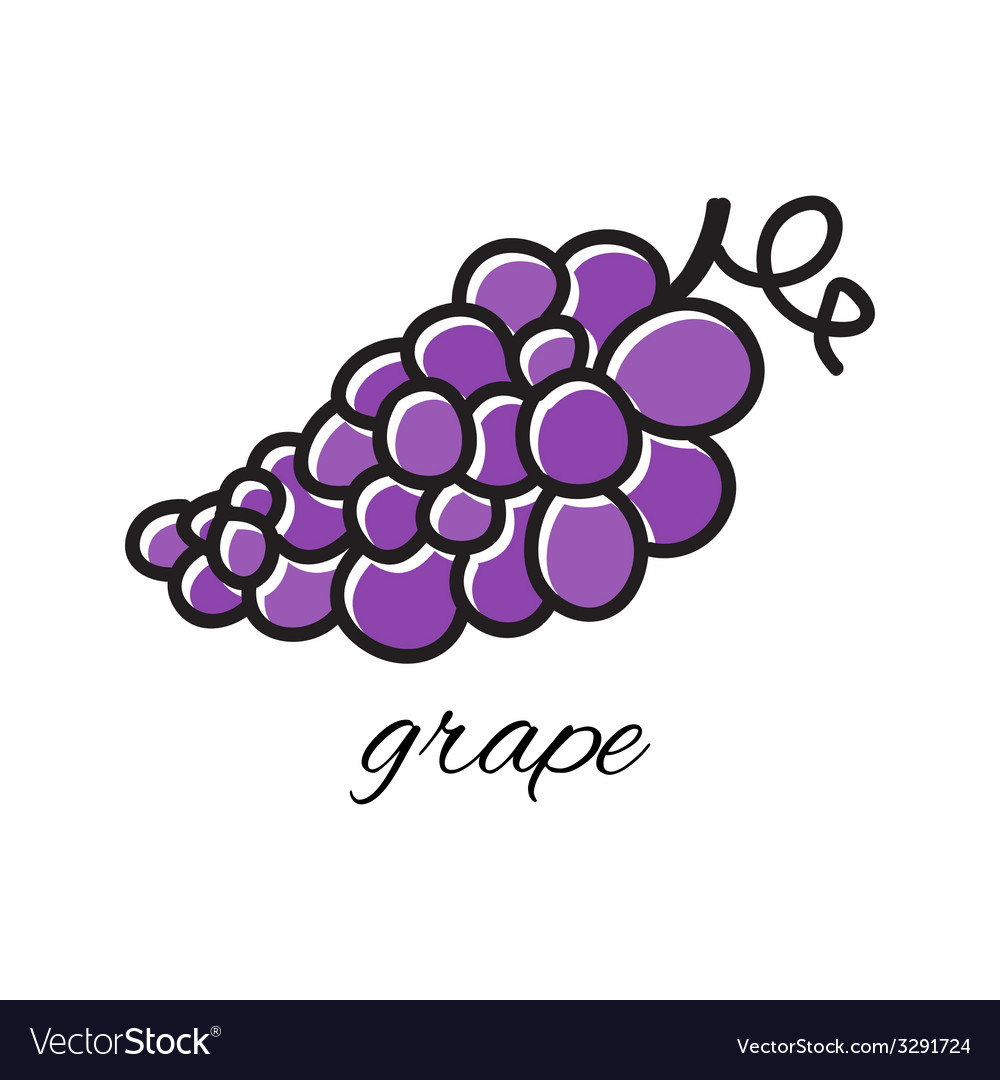 Doodle grape hand-drawn object isolated on white vector | Price: 1 Credit (USD $1)