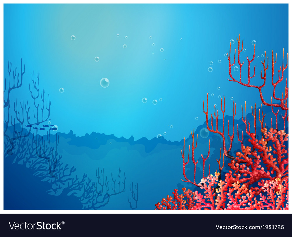 Beautiful corals under the sea vector | Price: 1 Credit (USD $1)