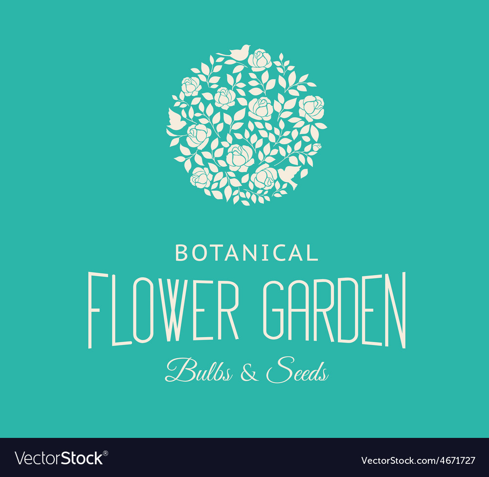 Rose bush silhouette vector | Price: 1 Credit (USD $1)