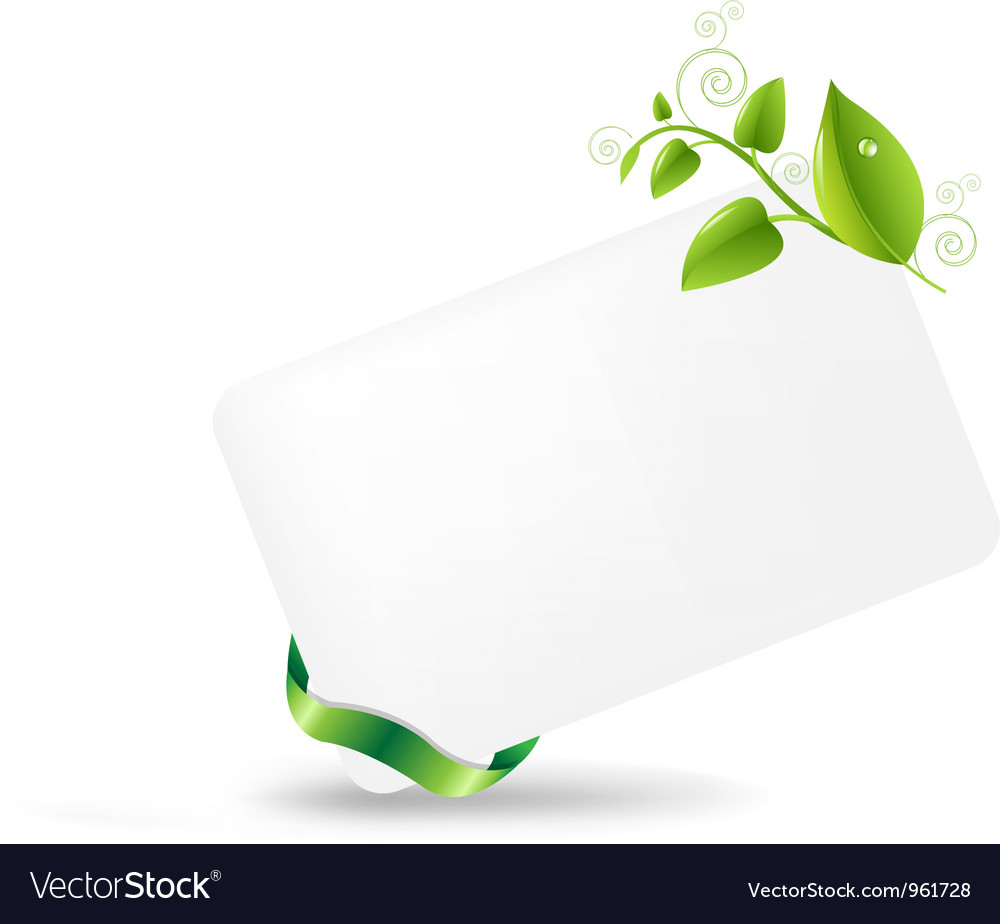 Vine leaves note vector