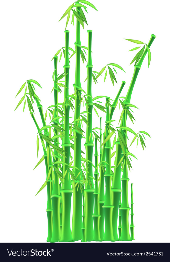 Bamboo sticks over white background vector | Price: 1 Credit (USD $1)