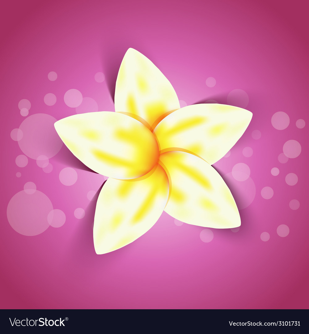 Spring yellow flower with shadow effect vector | Price: 1 Credit (USD $1)