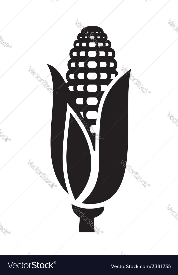 Corn icon vector | Price: 1 Credit (USD $1)