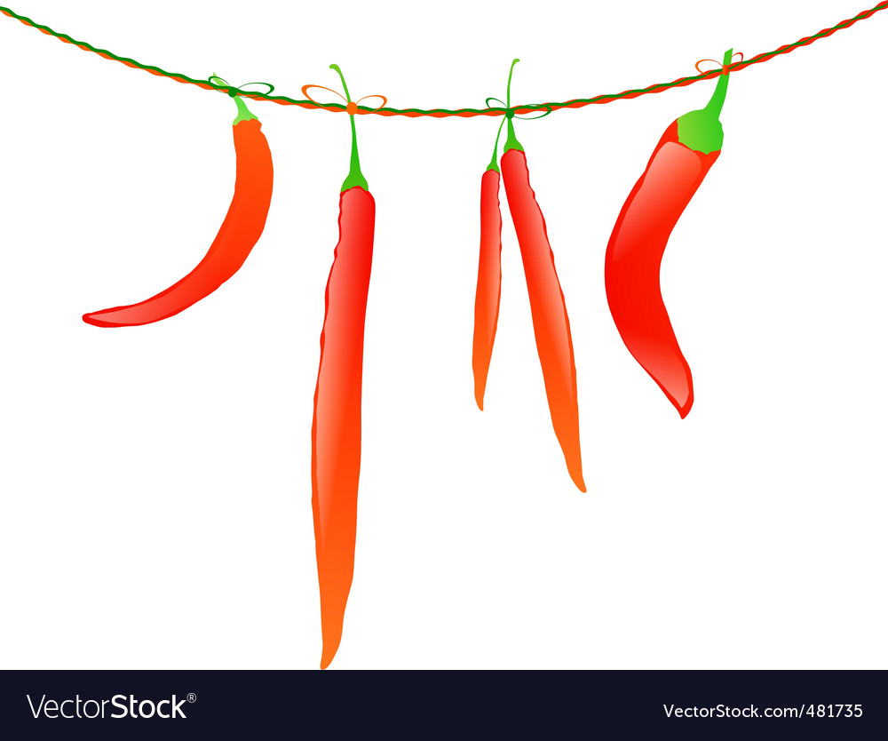 Hot peppers vector | Price: 1 Credit (USD $1)