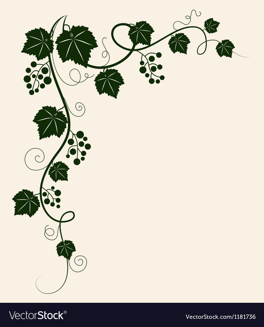 Beautiful grape vine green silhouette on beige vector | Price: 1 Credit (USD $1)
