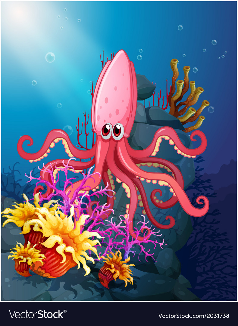 A big squid under the sea with the corals vector | Price: 1 Credit (USD $1)