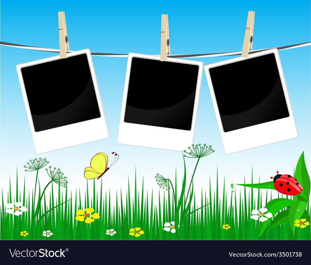 Photo frames on the summer background vector   Price: 1 Credit (USD $1)