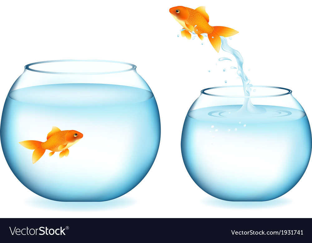 Goldfish jumping to other goldfish vector | Price: 1 Credit (USD $1)