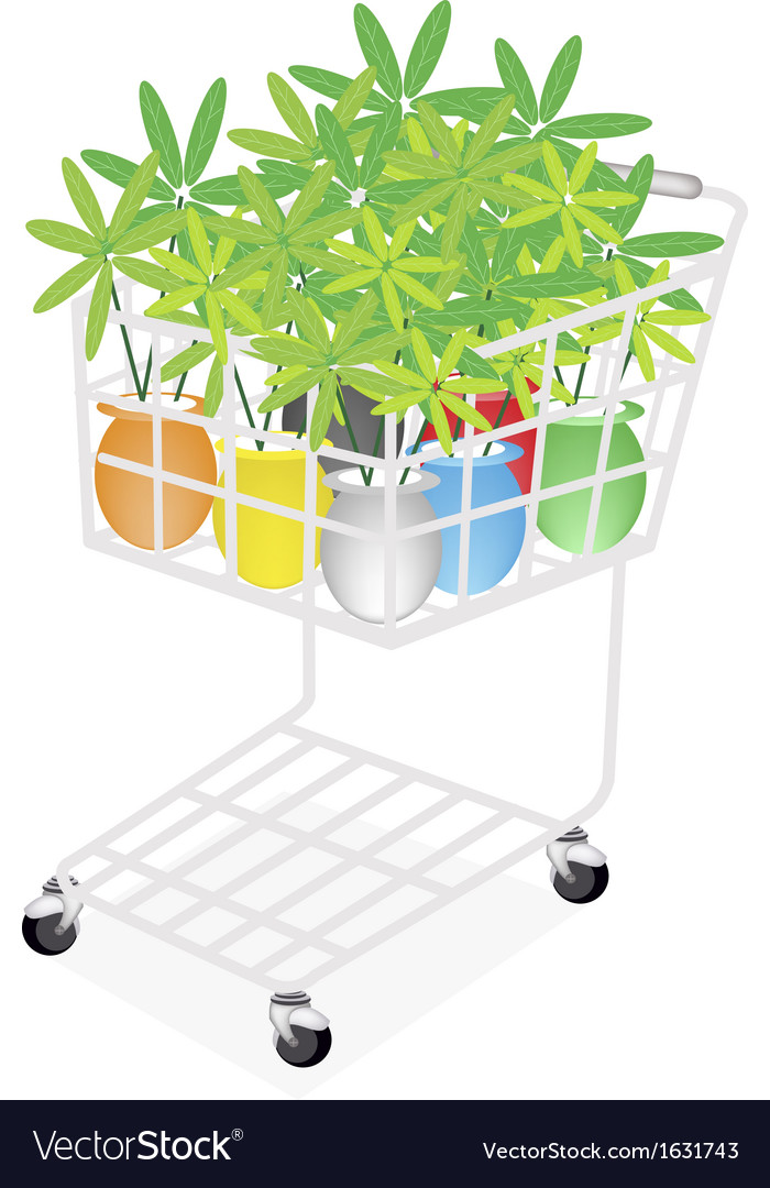 Lovely tree pot in a shopping cart vector | Price: 1 Credit (USD $1)
