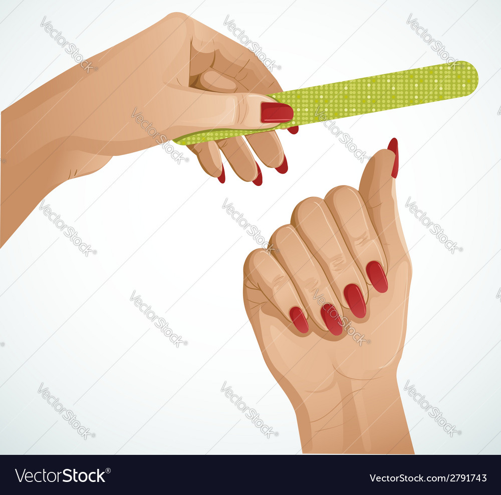 Woman hands one hand is holding a nail file vector | Price: 1 Credit (USD $1)