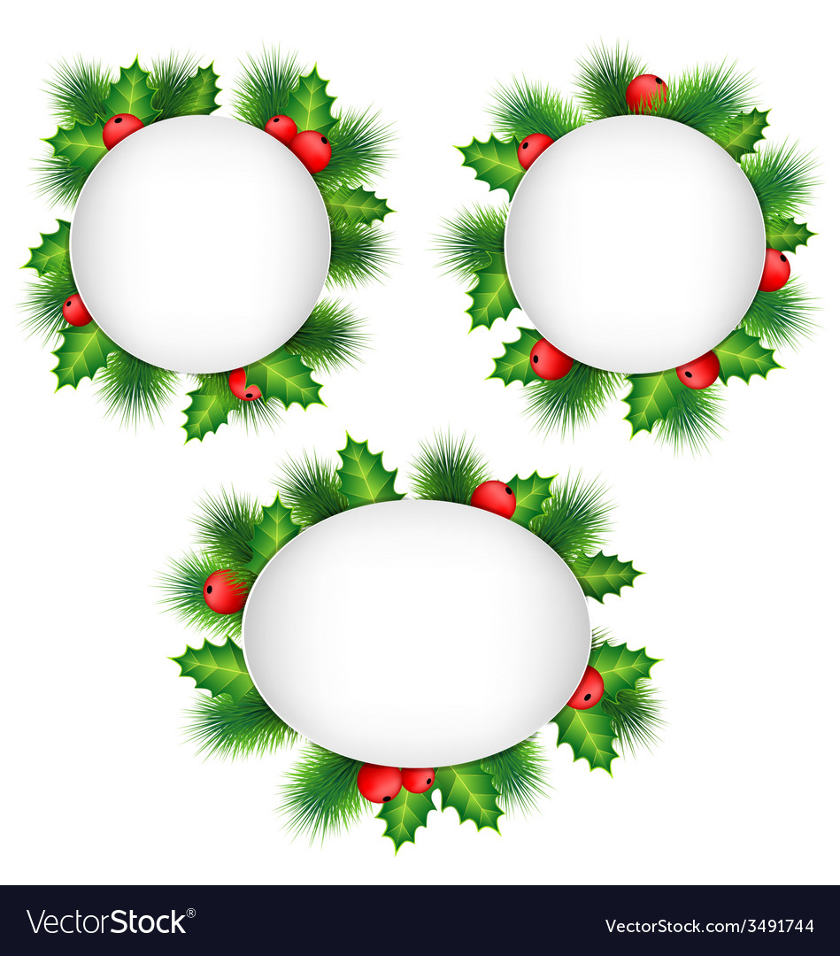 Frames with holly and pine isolated on white vector | Price: 1 Credit (USD $1)