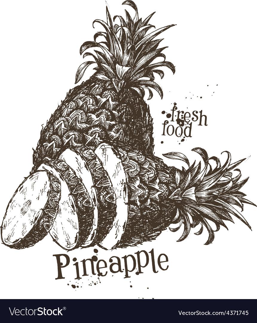 Pineapple logo design template fruit or vector | Price: 3 Credit (USD $3)