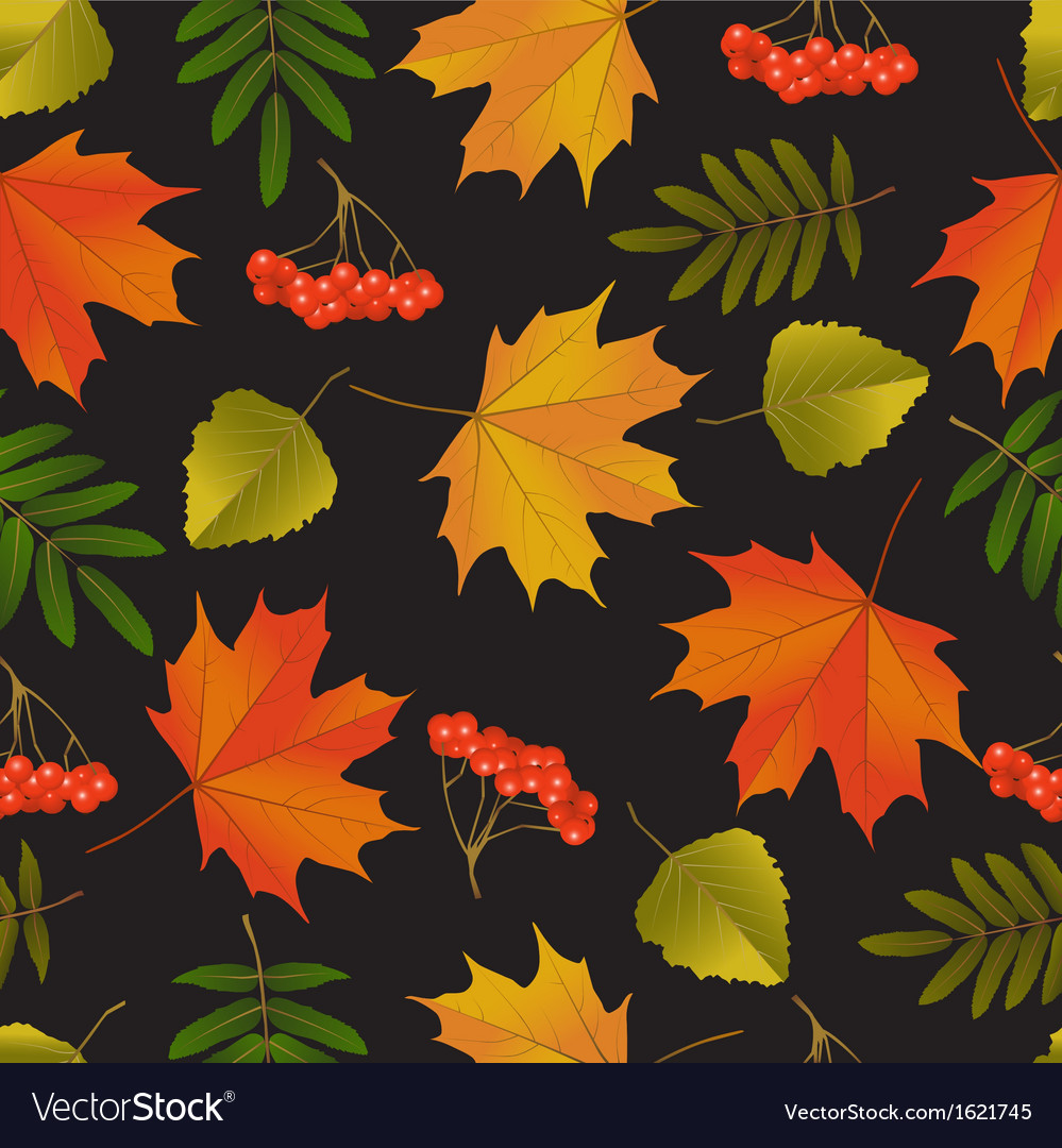 Seamless background with autumn leaves vector | Price: 1 Credit (USD $1)
