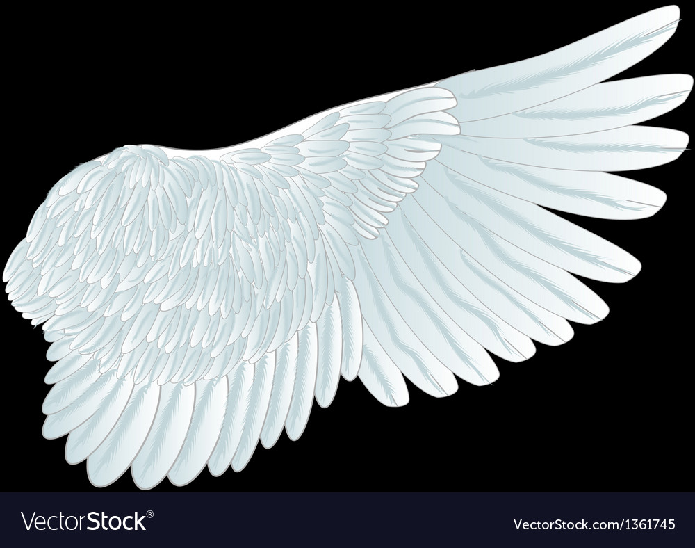 White wing vector | Price: 1 Credit (USD $1)