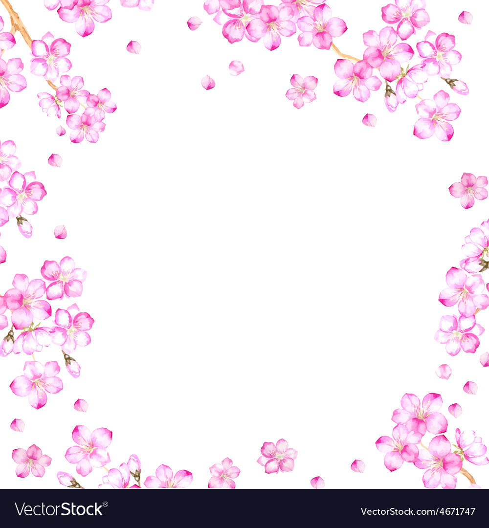 Frame of cherry blossom flowers vector | Price: 1 Credit (USD $1)