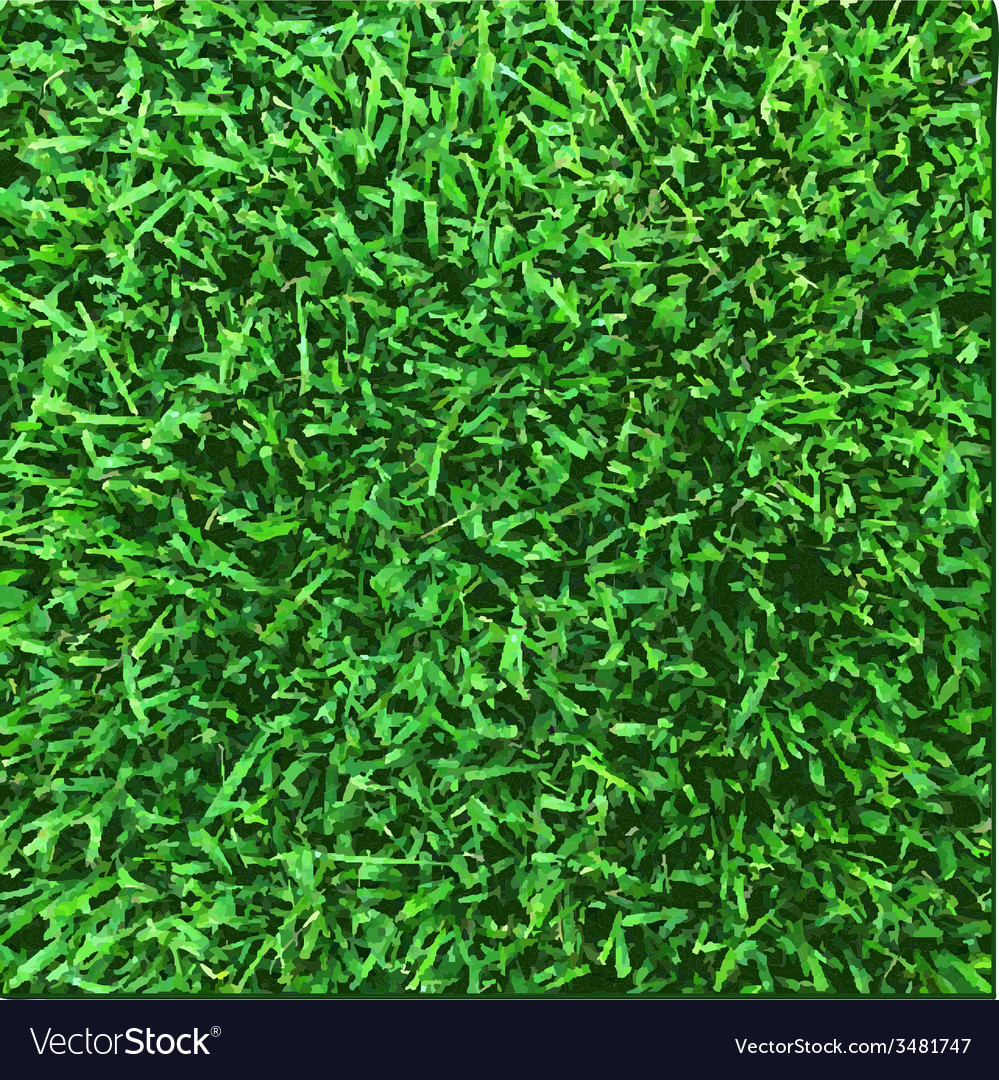 Grass texture vector | Price: 1 Credit (USD $1)