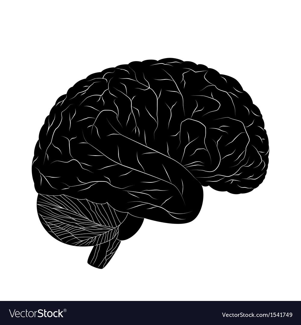 Black human brain vector | Price: 1 Credit (USD $1)