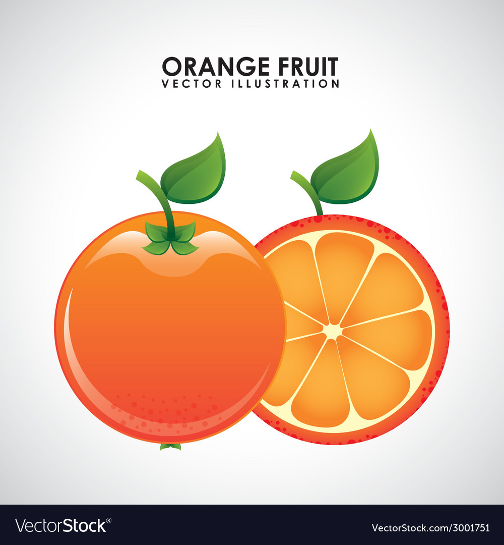 Fruits design vector | Price: 1 Credit (USD $1)