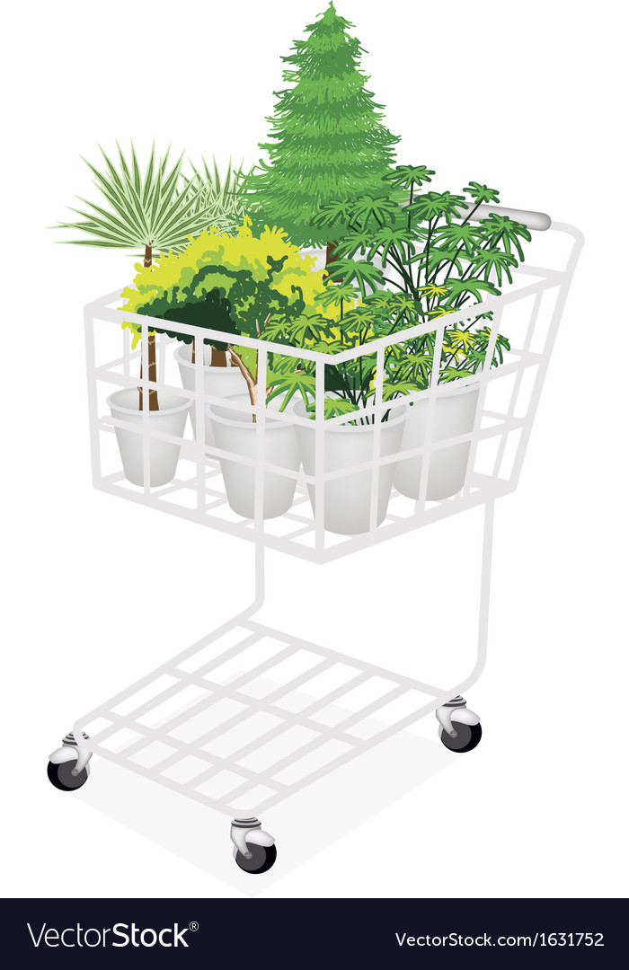 Green trees and plants in a shopping cart vector | Price: 1 Credit (USD $1)