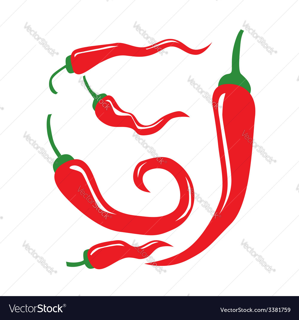 Chili pepper vector | Price: 1 Credit (USD $1)