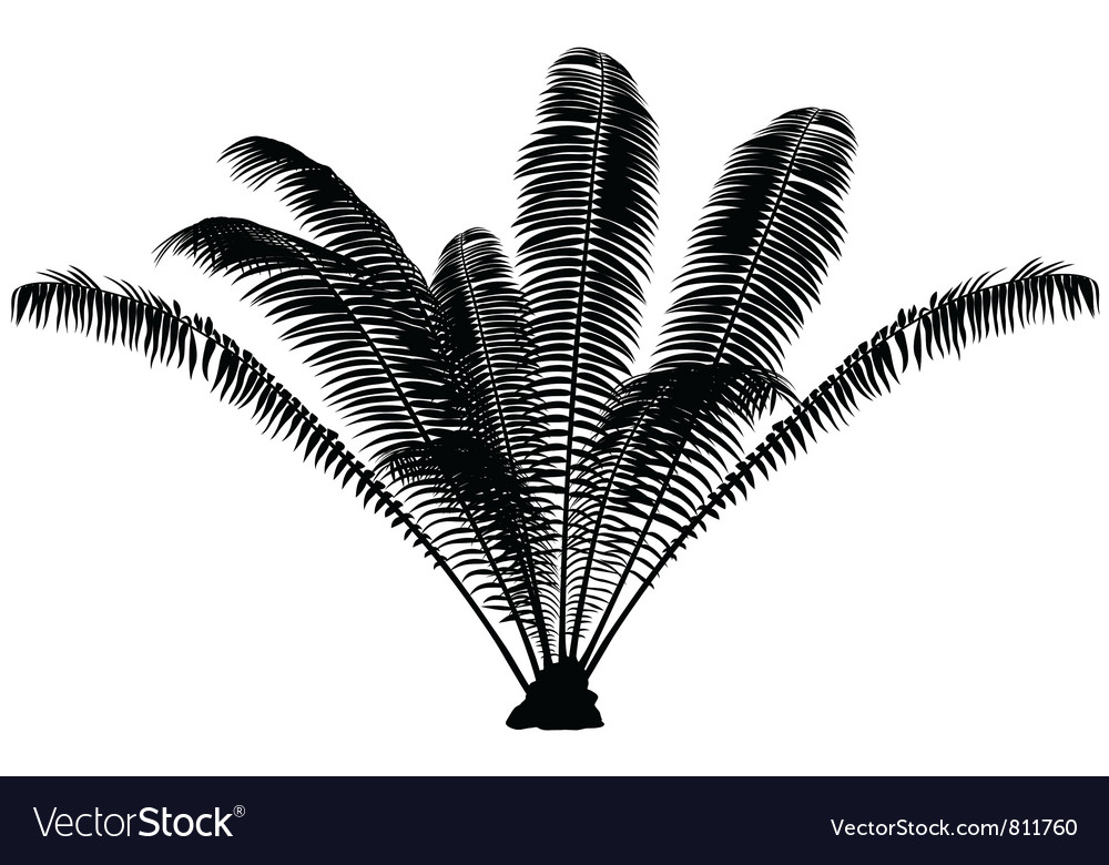 Palm silhouette vector | Price: 1 Credit (USD $1)