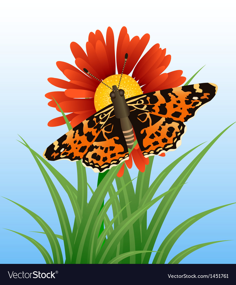 Realistic butterfly on flower vector | Price: 1 Credit (USD $1)