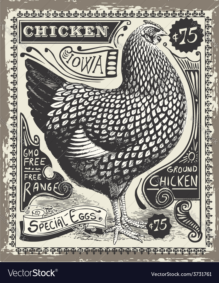 Vintage poultry and eggs advertising page vector | Price: 3 Credit (USD $3)