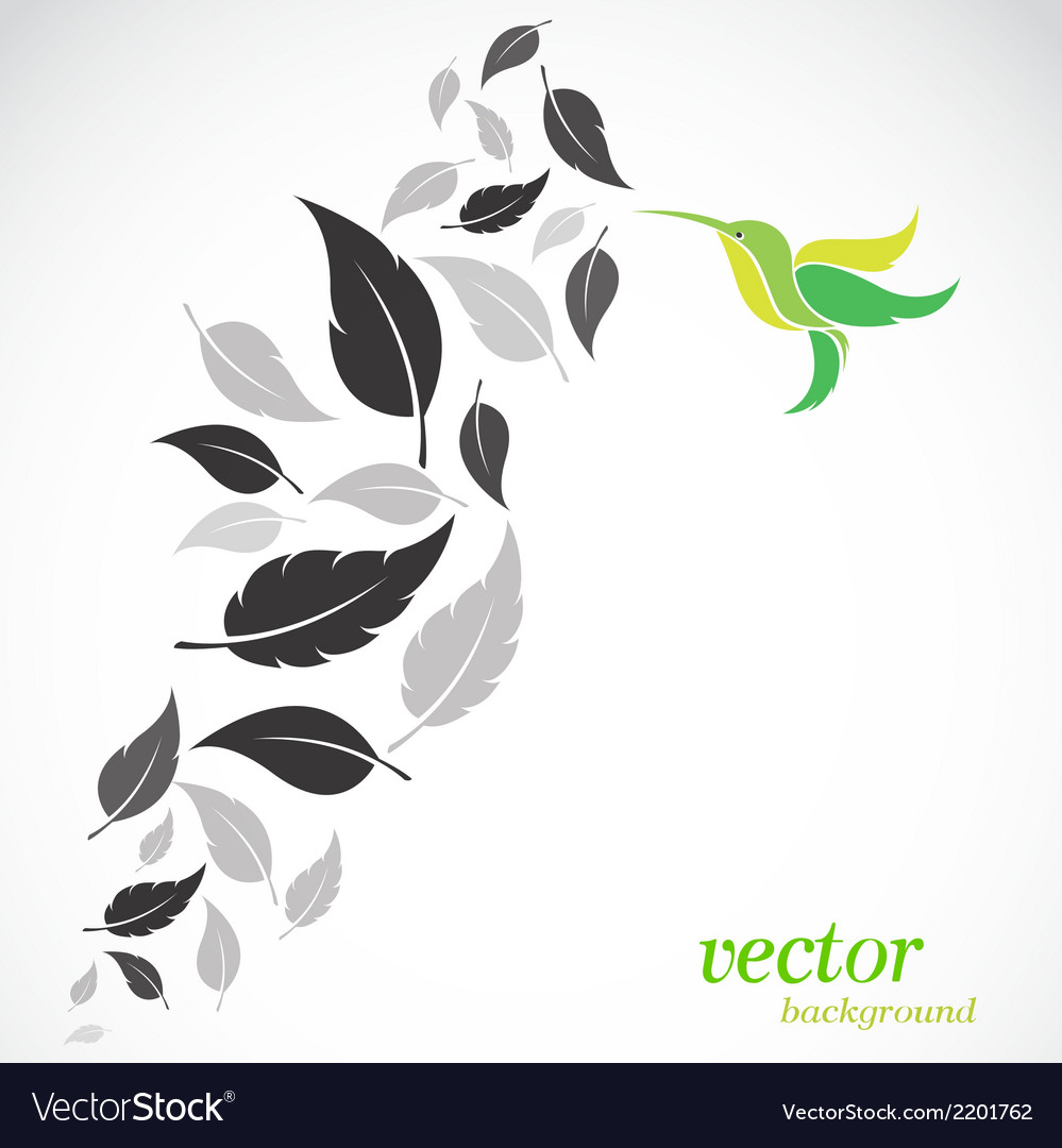 Abstract leaves and hummingbirds vector | Price: 1 Credit (USD $1)