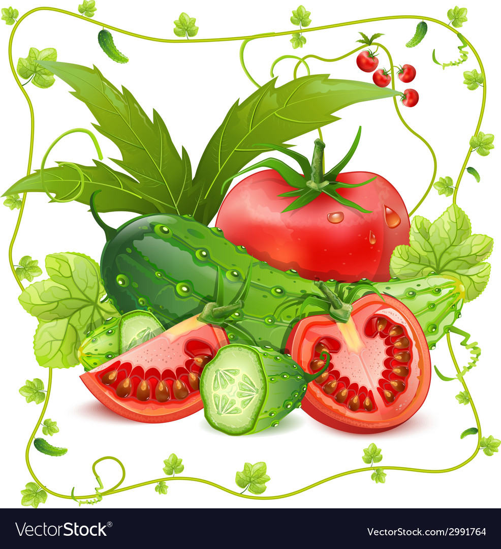 Still life of tomatoes and cucumbers vector | Price: 1 Credit (USD $1)