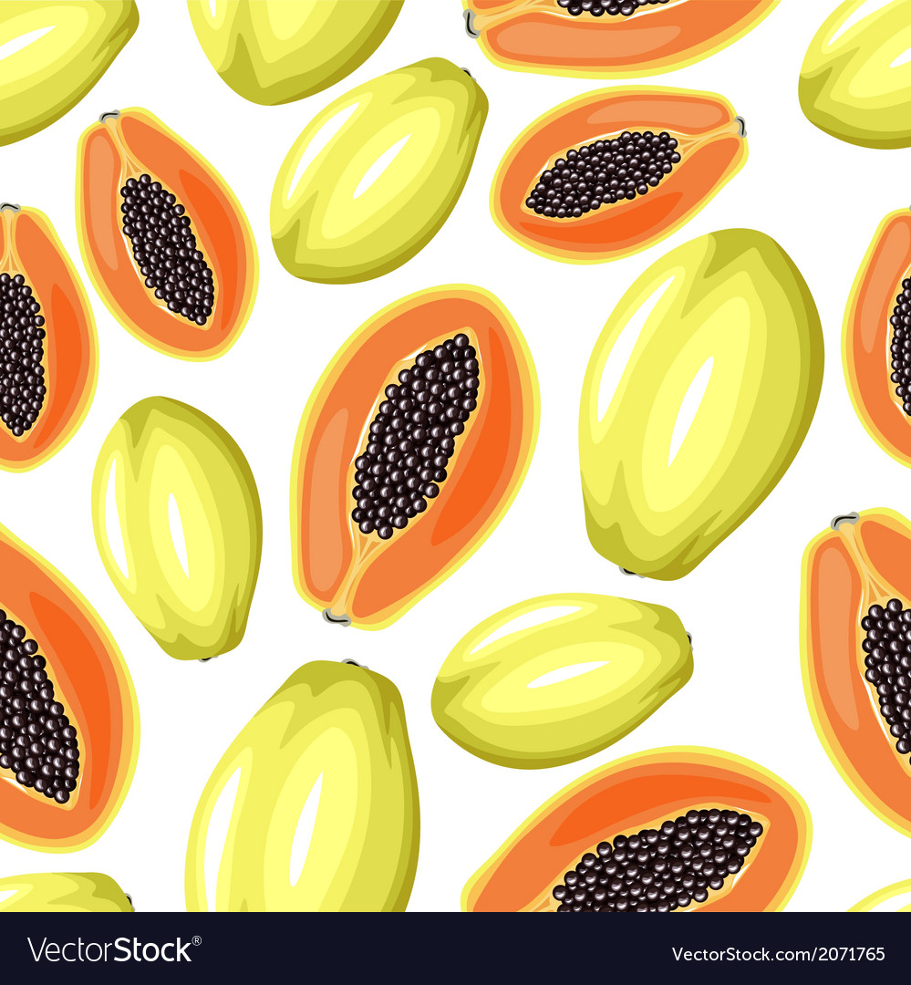 Papaya pattern vector | Price: 1 Credit (USD $1)