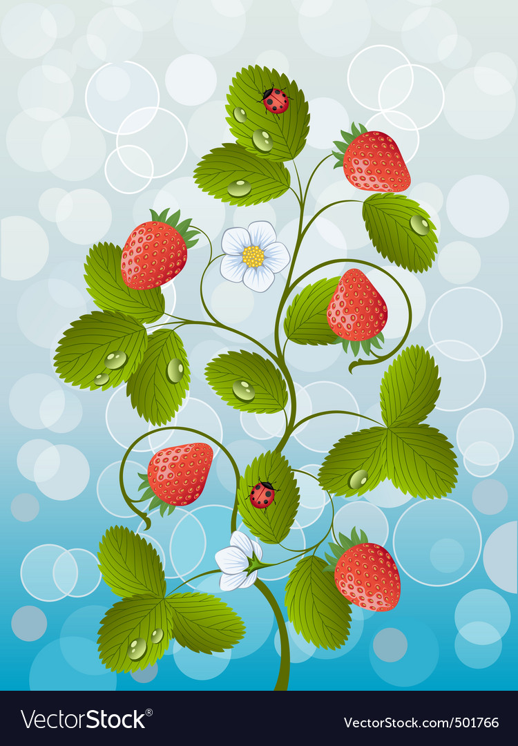 Strawberry vector | Price: 3 Credit (USD $3)