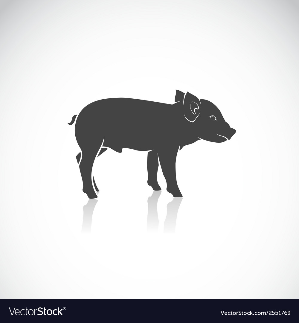 Image of a piglet vector | Price: 1 Credit (USD $1)