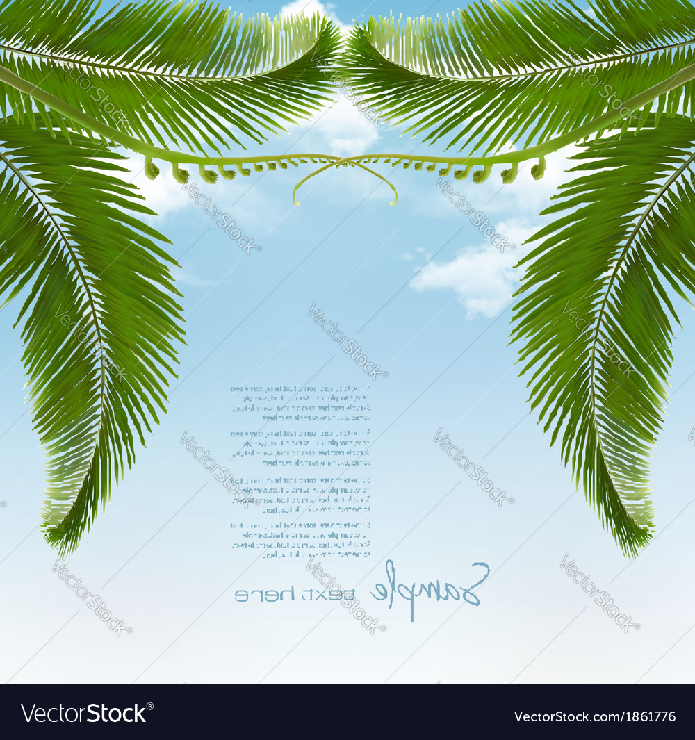 Palm leaves on sky vector | Price: 1 Credit (USD $1)