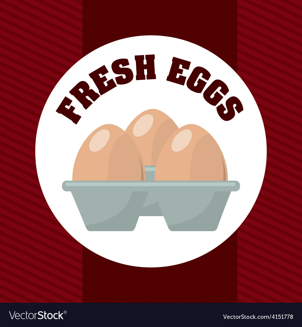 Fresh eggs vector | Price: 1 Credit (USD $1)