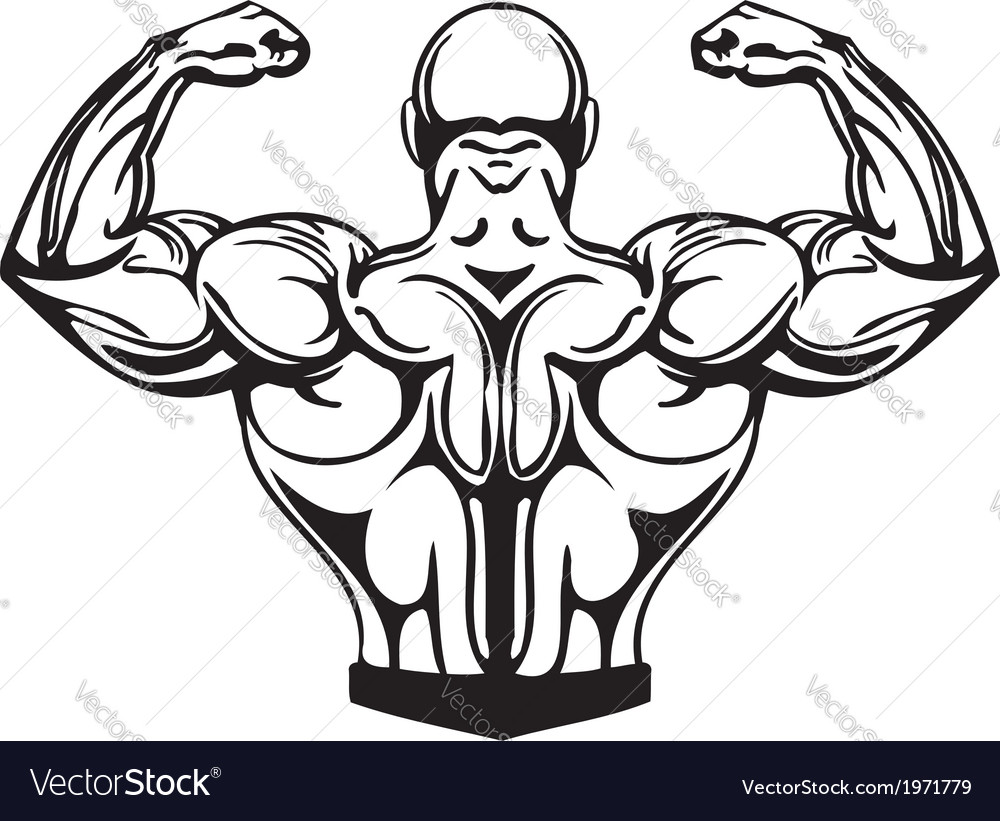 Bodybuilding and powerlifting - vector | Price: 1 Credit (USD $1)