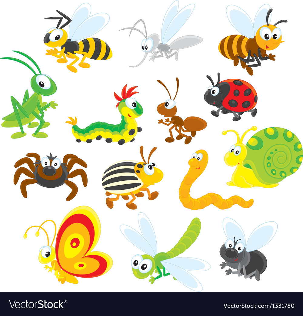Insects vector | Price: 3 Credit (USD $3)