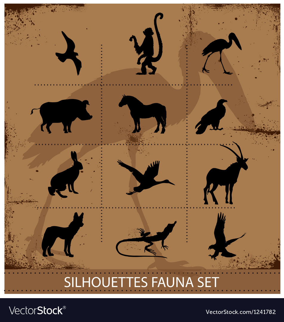 Safari fauna symbols silhouette set collection vector | Price: 1 Credit (USD $1)