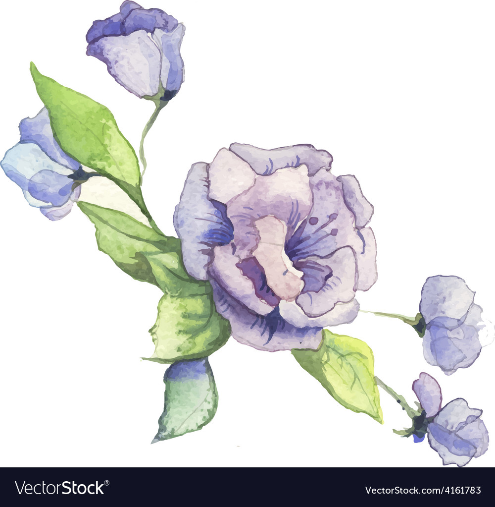 The spring flowers watercolor isolated vector   Price: 1 Credit (USD $1)