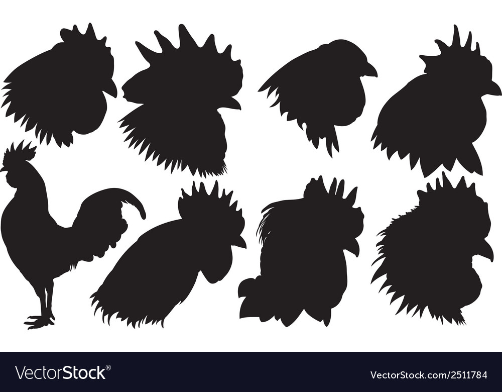 Roosters vector | Price: 1 Credit (USD $1)