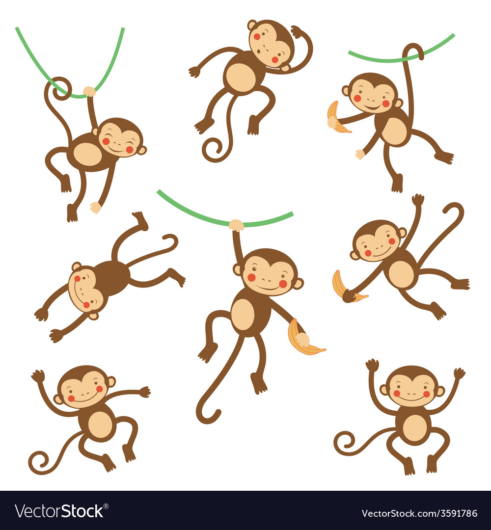 Cute funny monkeys vector | Price: 1 Credit (USD $1)