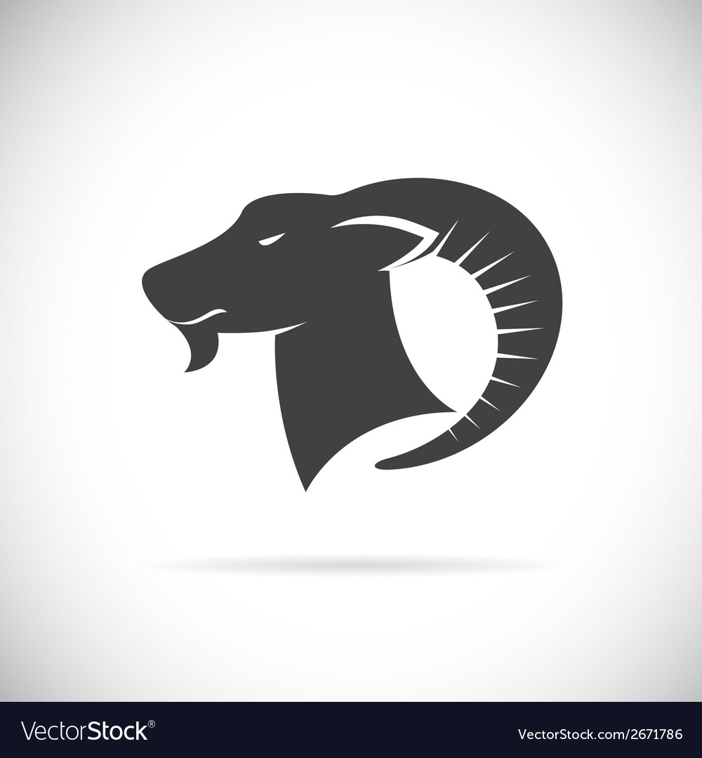 Image of an goats head vector | Price: 1 Credit (USD $1)