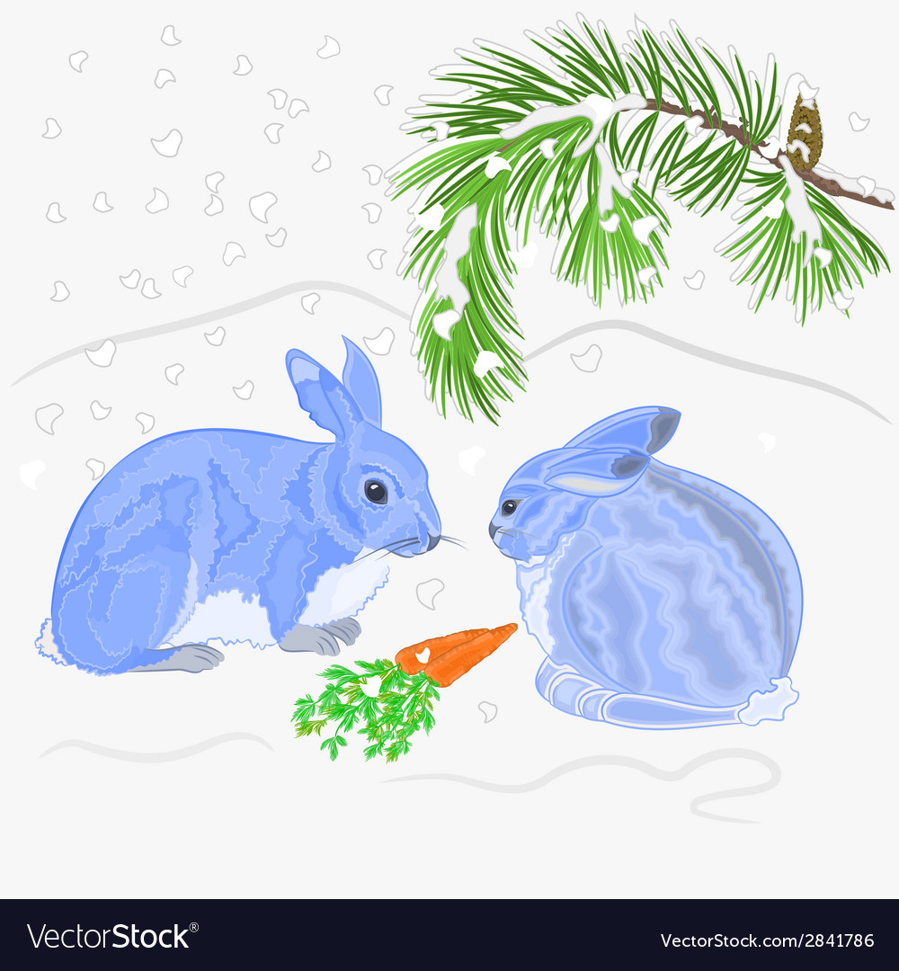 Rabbits and snow christmas motive vector | Price: 1 Credit (USD $1)