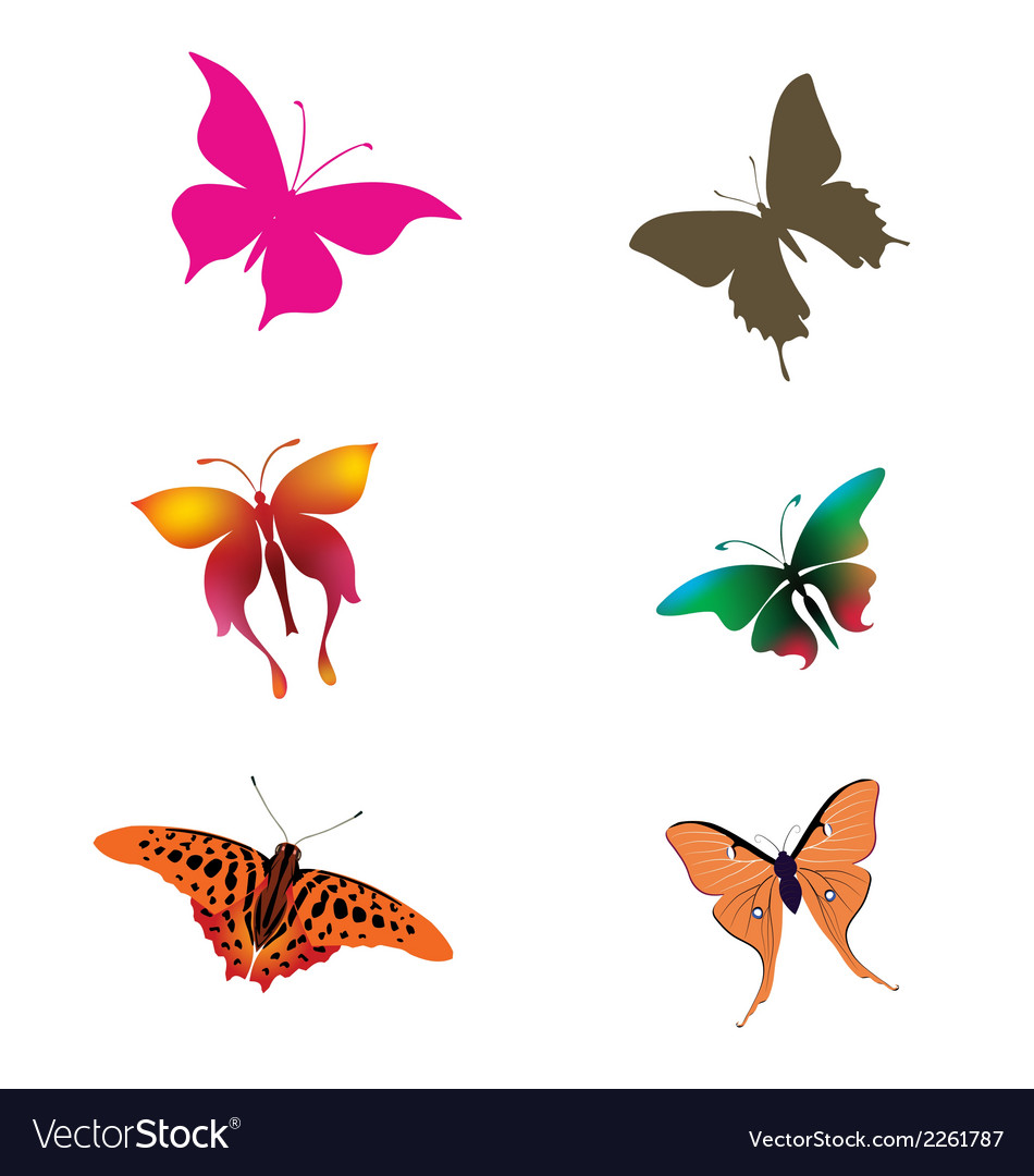 Collection of butterfly clipart download vector | Price: 1 Credit (USD $1)
