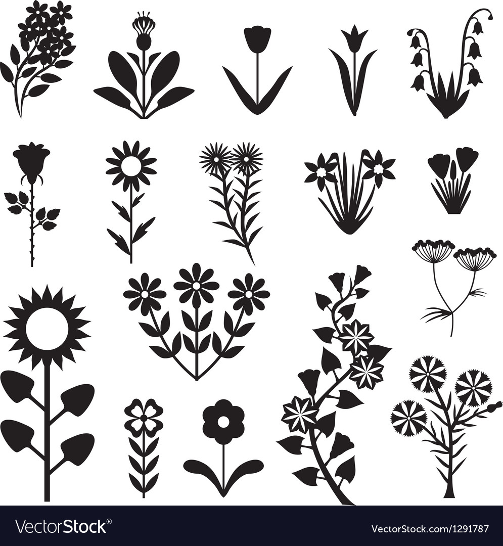 Flower set black vector | Price: 1 Credit (USD $1)
