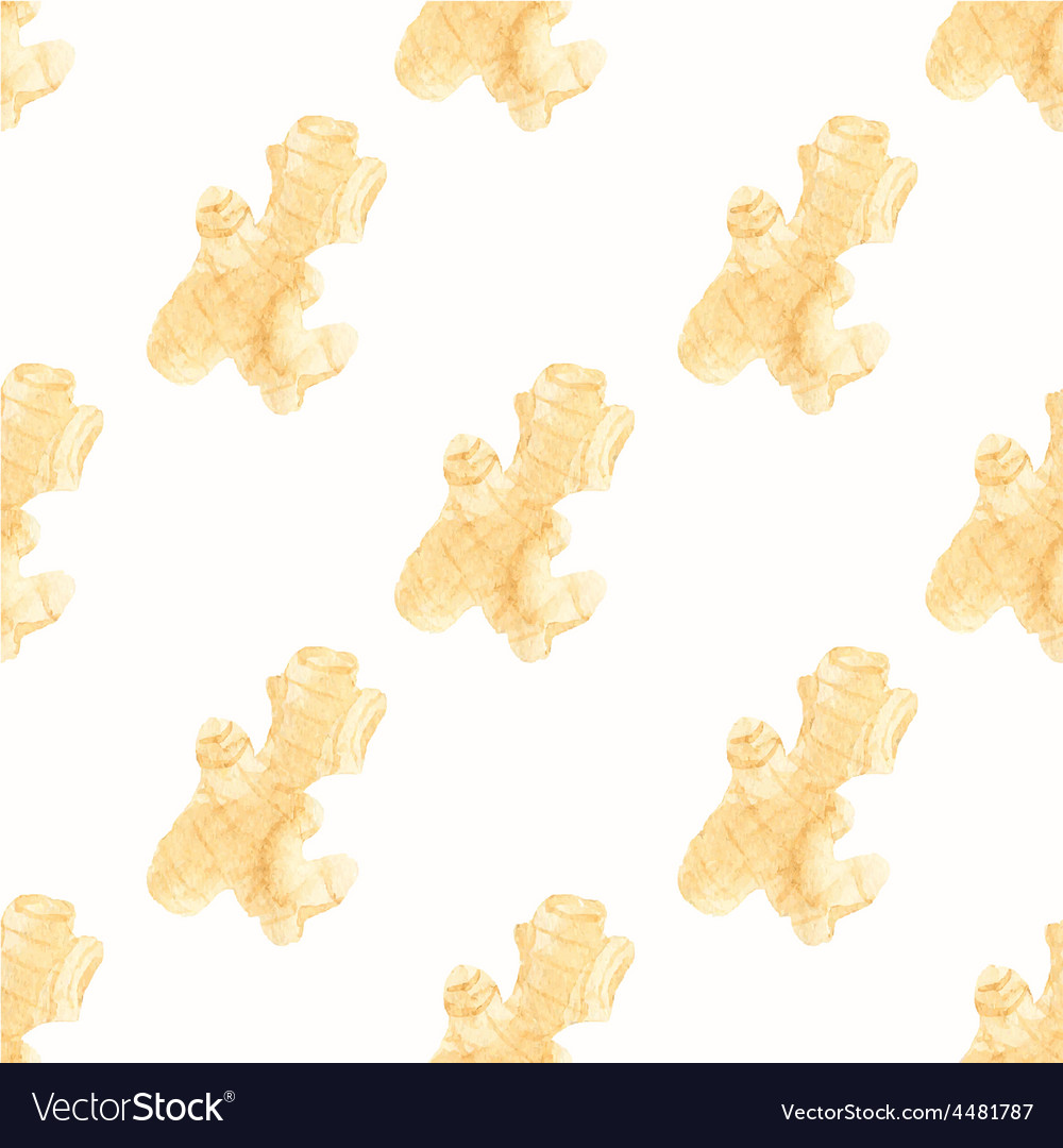 Seamless watercolor pattern with ginger on the vector | Price: 1 Credit (USD $1)