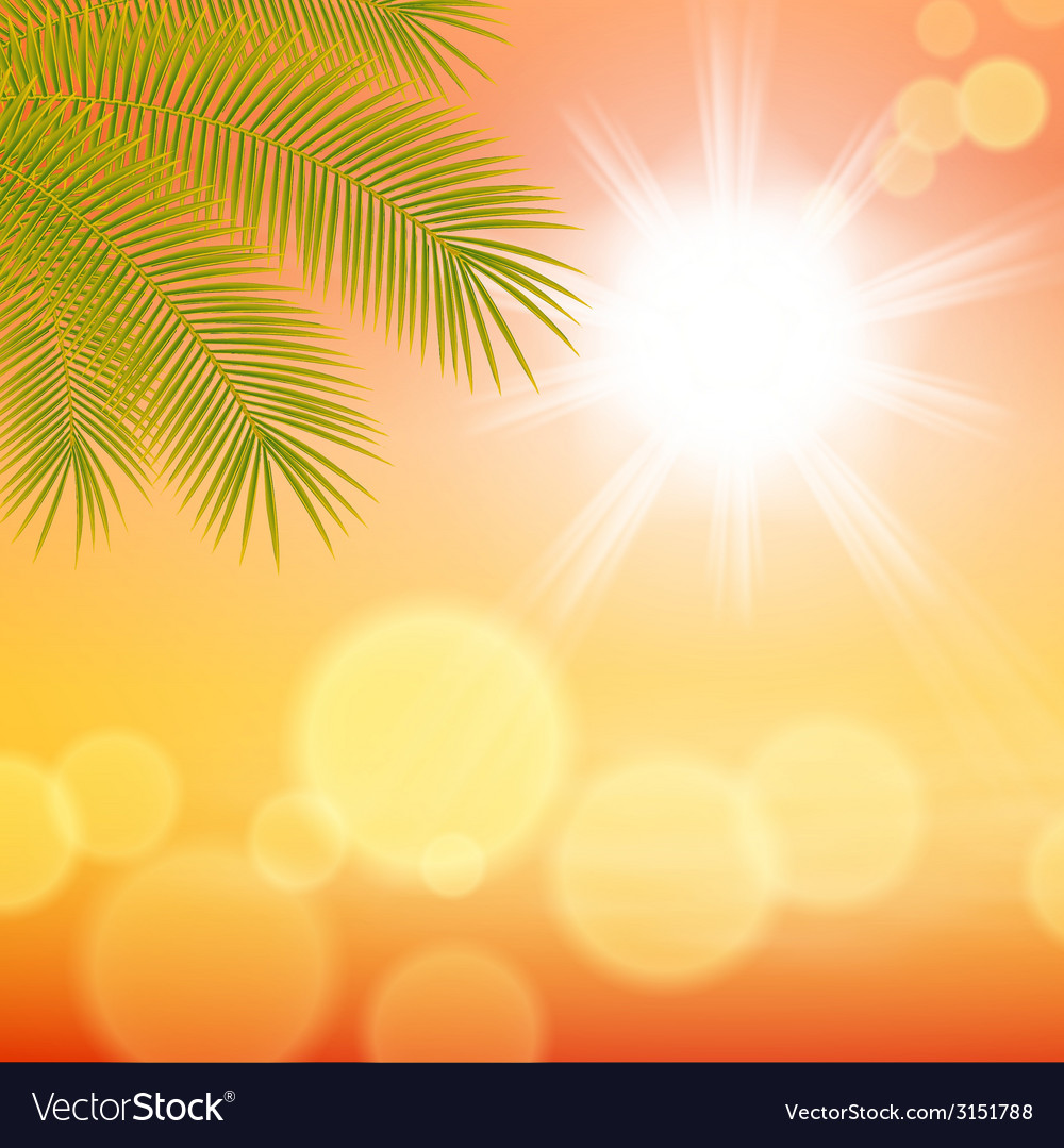 Sunny background with palm leaves vector   Price: 1 Credit (USD $1)