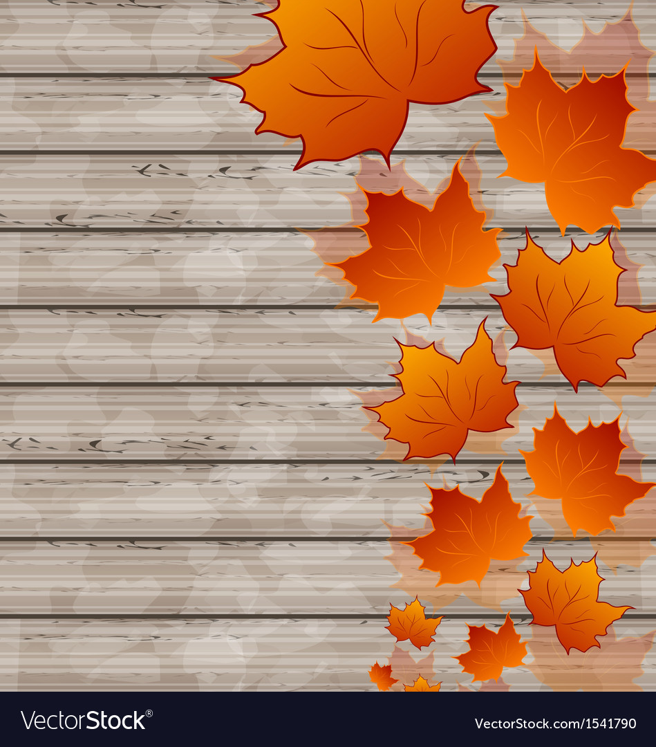 Autumn leaves maple on wooden texture vector | Price: 1 Credit (USD $1)